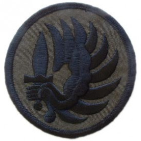 PATCH / ECUSSON PARA thermo collant